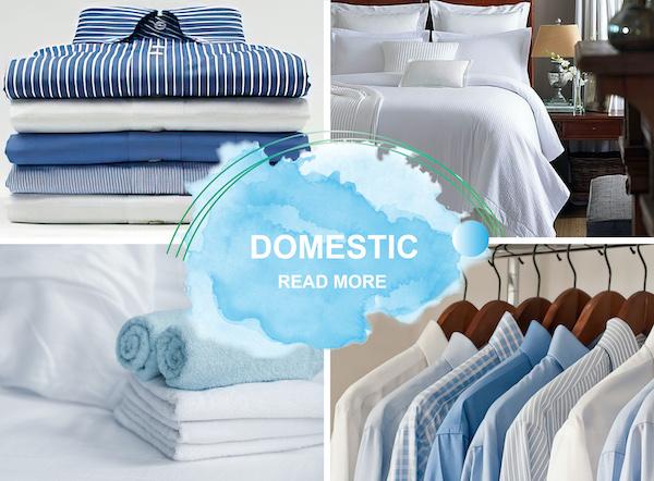 Domestic read more